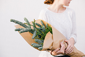 Photo of a woman holding plants